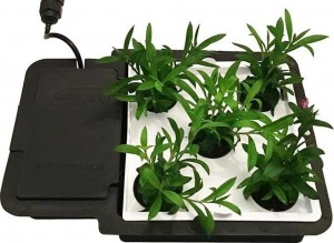 AutoPot Taca AquaPalte do systemu 1POT 15L i Easy2Grow