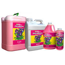 GHE Flora Bloom 1L