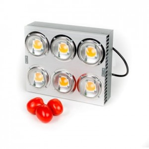 Spectrolight MAXIMUS 1000W 120° - Lampa COB LED